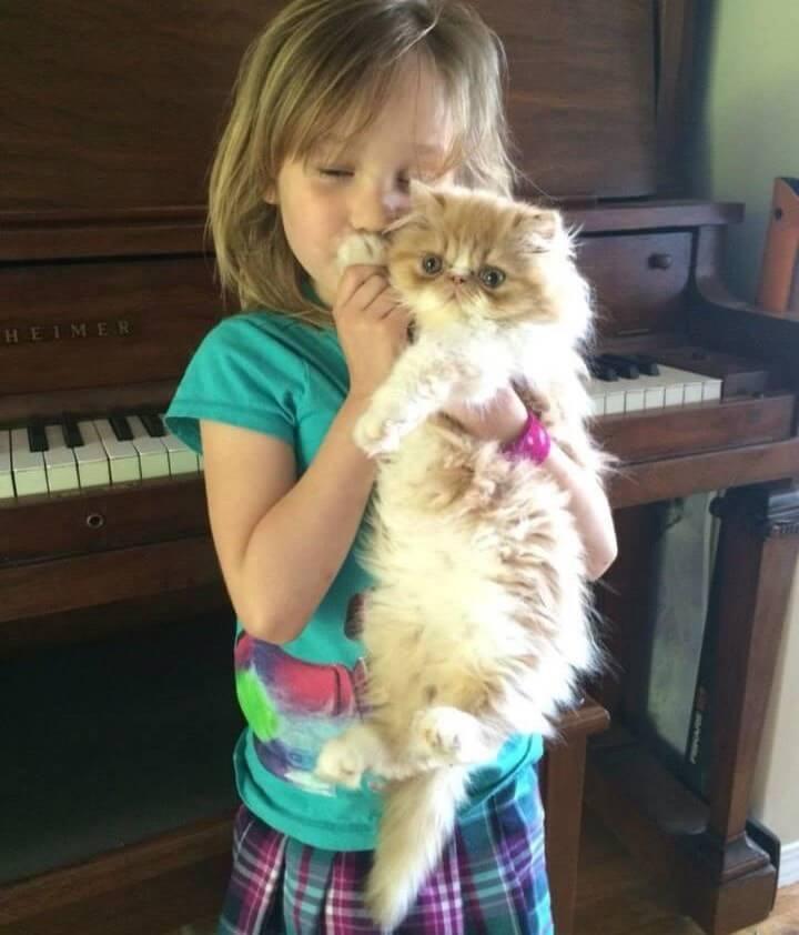 Esta niña encontró al amigo que anhelaba en este gato con necesidades especiales 01