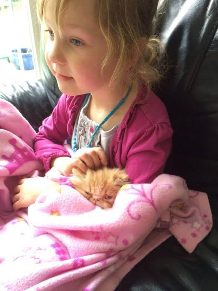 Esta niña encontró al amigo que anhelaba en este gato con necesidades especiales 02