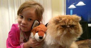 Esta niña encontró al amigo que anhelaba en este gato con necesidades especiales