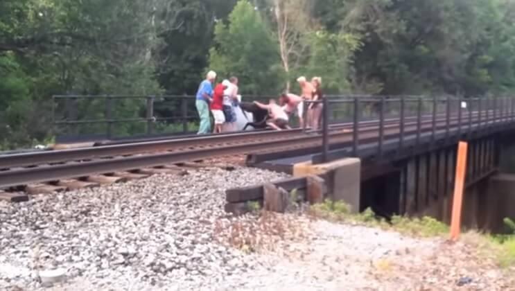 Estas personas no esperaban tropezarse con lo que encontraron en las vías del tren 1