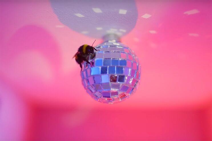 Este hotel para abejas inspirado en el Gran Hotel Budapest es una increíble iniciativa 6