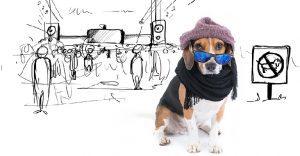 Este lindo Beagle vive las más grandes aventuras en esta serie de doodles animados