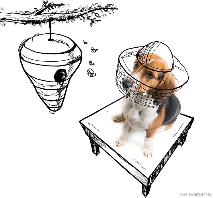 Este lindo Beagle vive las más grandes aventuras en esta serie de doodles animados abeja
