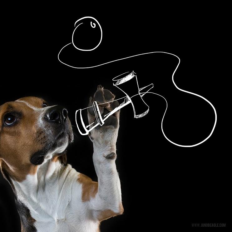 Este lindo Beagle vive las más grandes aventuras en esta serie de doodles animados bolero