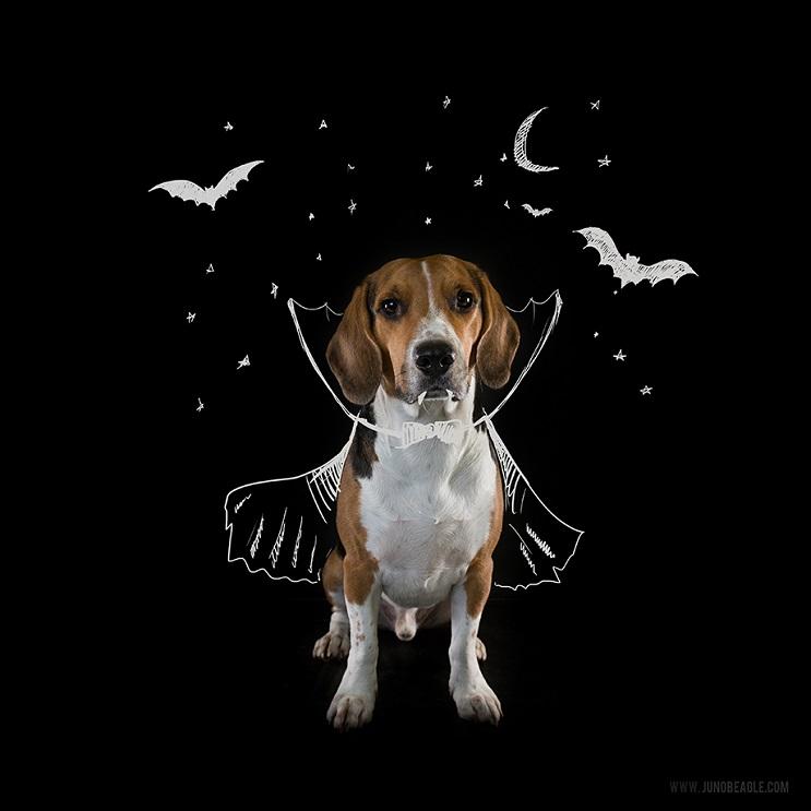Este lindo Beagle vive las más grandes aventuras en esta serie de doodles animados halloween