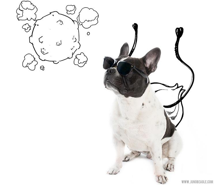 Este lindo Beagle vive las más grandes aventuras en esta serie de doodles animados lentes