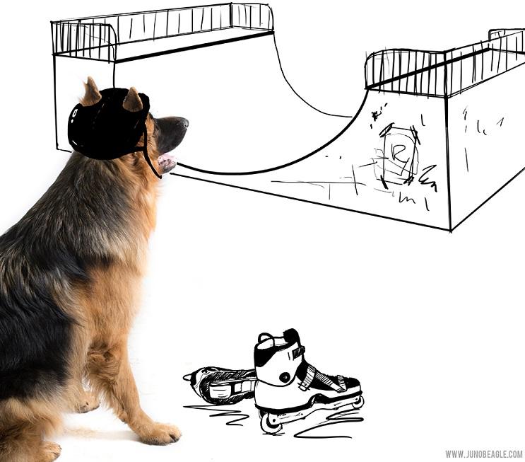 Este lindo Beagle vive las más grandes aventuras en esta serie de doodles animados skater