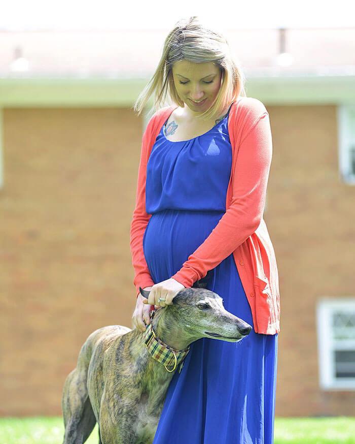 Este perro de carreras le temía a los humanos hasta que nació se hermano adoptivo 04