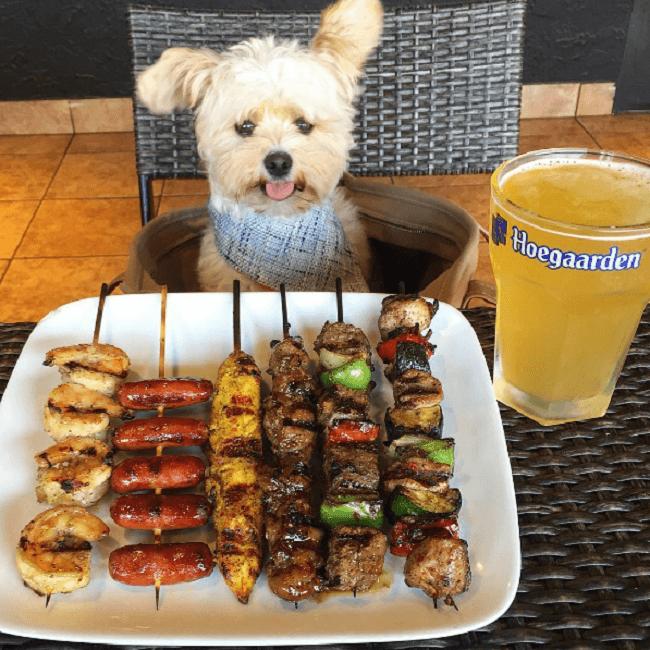 Este perro es un comelón y se ha convertido en toda una sensación en Instagram 06