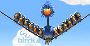 Estos pájaros aprenderán una lección sobre el bullying que nunca olvidarán