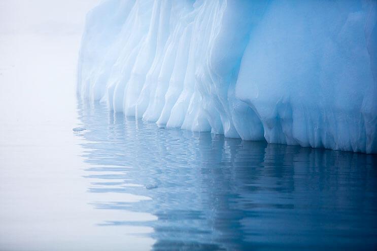 Imágenes impresionantes de un viaje en la Antártida 4