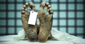 Increíble: Investigaciones descubren vida en el cuerpo después de la muerte