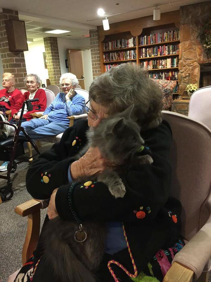Increíble iniciativa que lleva amor a los adultos mayores a través de gatos adultos 01