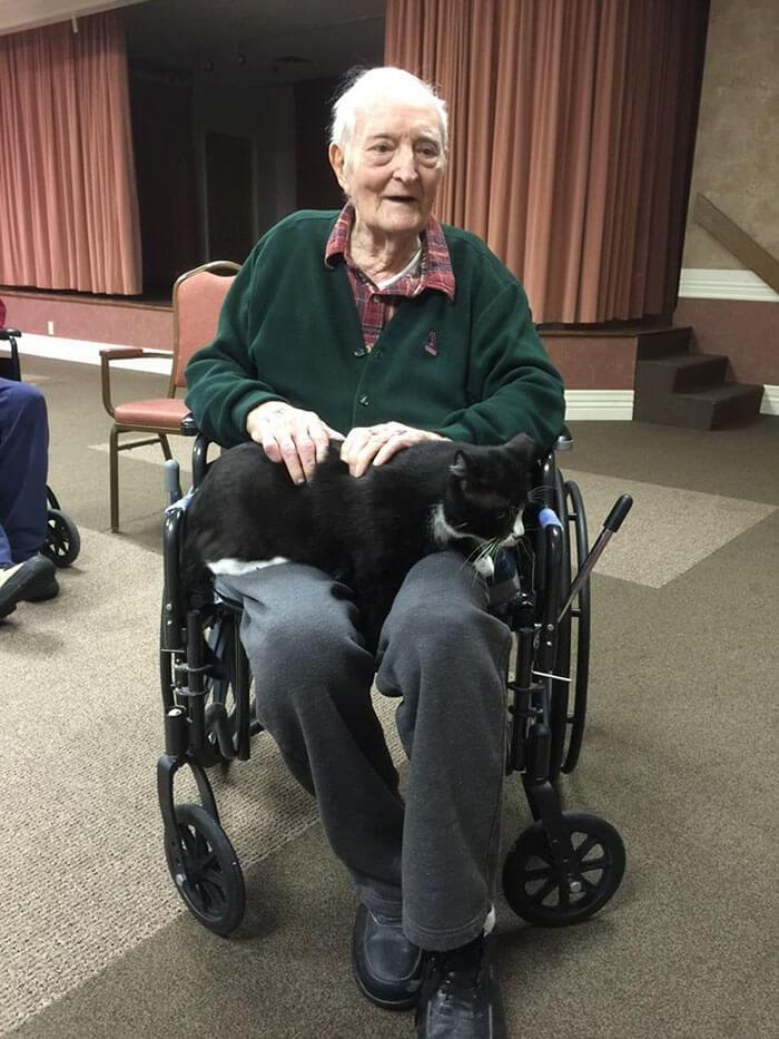 Increíble iniciativa que lleva amor a los adultos mayores a través de gatos adultos 02