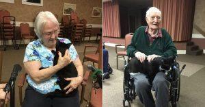Increíble iniciativa que lleva amor a los adultos mayores a través de gatos adultos