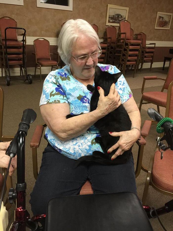 Increíble iniciativa que lleva amor a los adultos mayores a través de gatos adultos 03