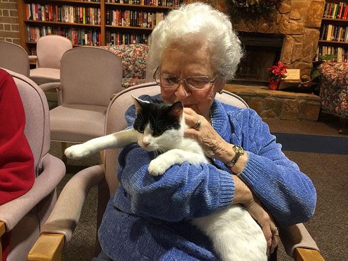 Increíble iniciativa que lleva amor a los adultos mayores a través de gatos adultos 04