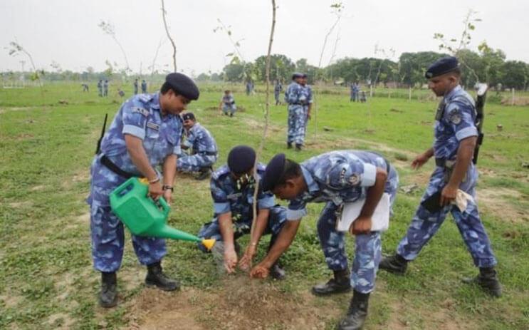 India rompe record al plantar 50 millones de arboles 5