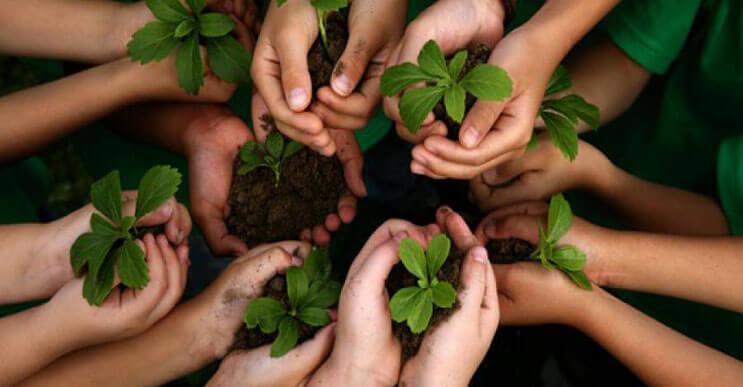 India-rompe-record-al-plantar-50-millones-de-arboles-portada