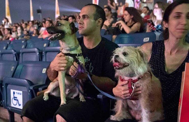 Ir al cine con tu mascota. En Israel ya es posible 4