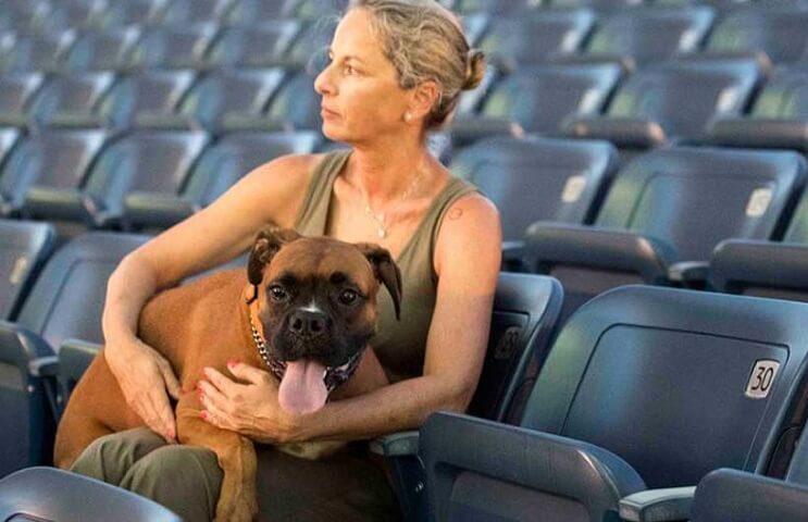Ir al cine con tu mascota. En Israel ya es posible 9