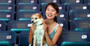 ¿Ir al cine con tus mascotas? En Israel ya es posible