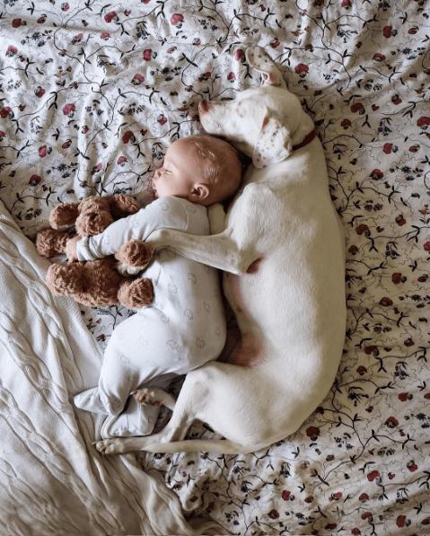 La ternura de este bebé con su perrita les robará el corazón 02