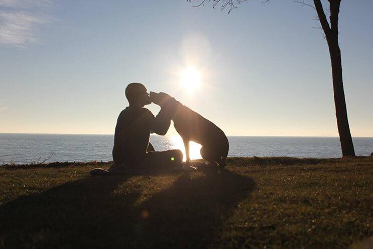 Le organizó el ultimo viaje a su perra con cáncer sin saber que sería el inicio de un gran aventura8