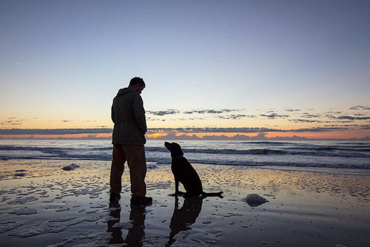 Le organizó el ultimo viaje a su perra con cáncer sin saber que sería el inicio de un gran aventura9