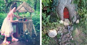 Lo que encontraron tras esta pequeña puerta en un árbol los dejará asombrados