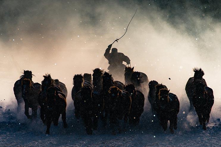 National Geographic Los ganadores del concurso de fotografía 2016 2