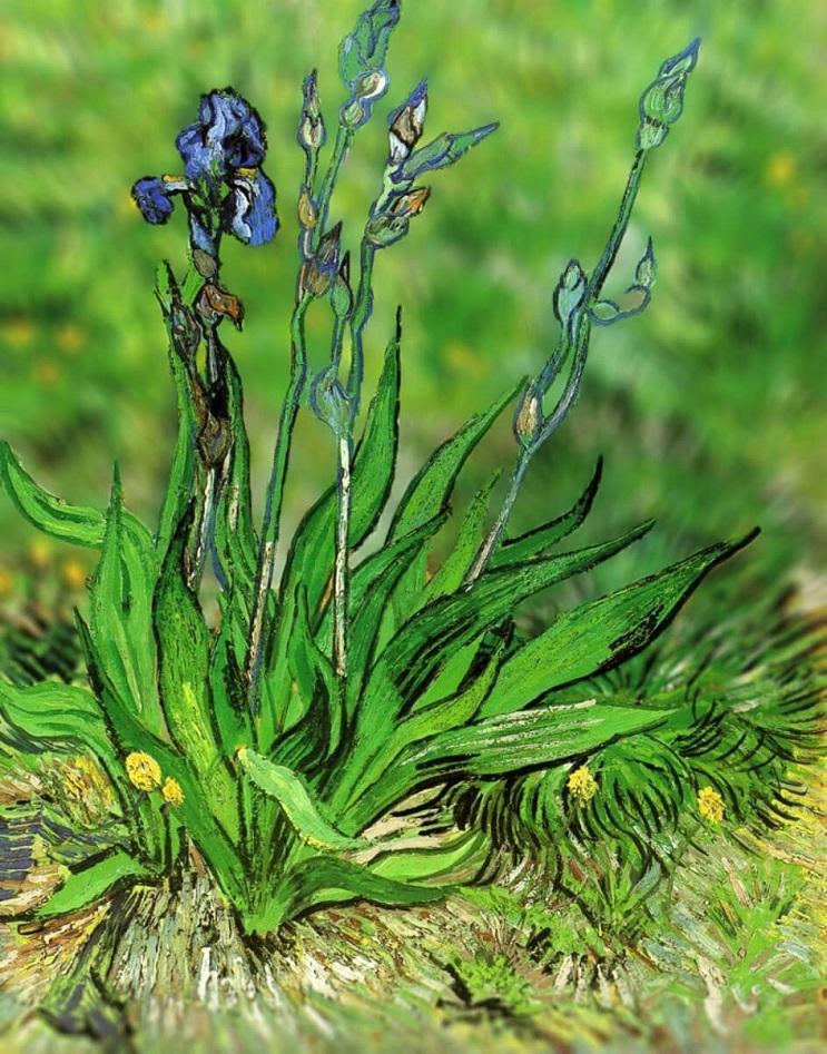 Photoshop ataca Aplican desenfoque a las obras de Van Gogh y el resultado es increíble 03