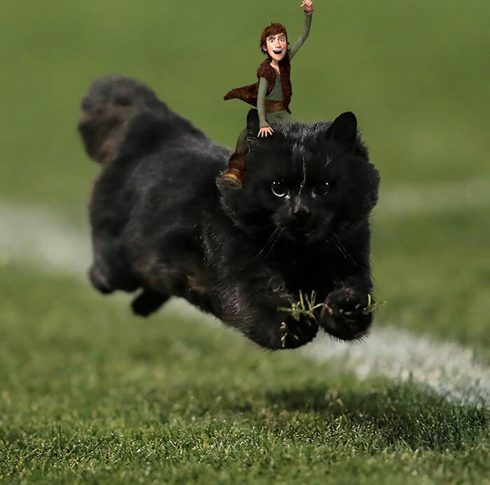 Un gato interrumpe en un partido de rugby y desata una nueva batalla de Photoshop 14