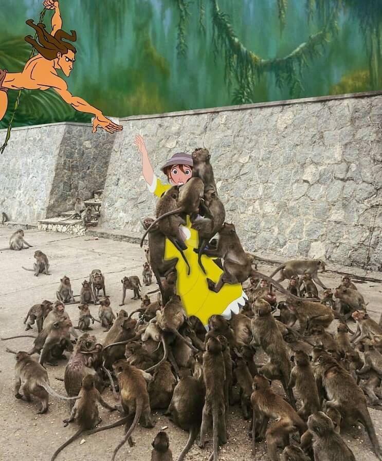 Un hombre quiso alimentar a los monos y le pasó esto. Por si fuera poco, el Photoshop también lo agarró 03