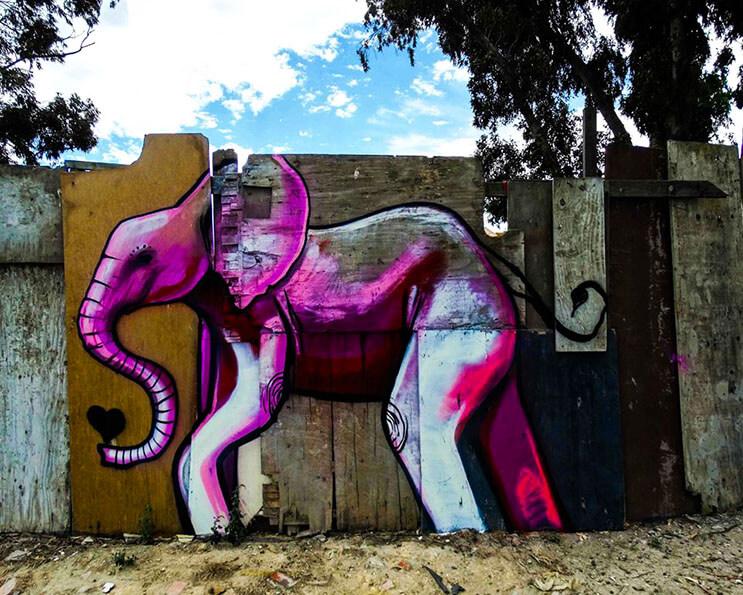 Una serie de graffitis de elefantes buscan dar esperanza a Sudáfrica 13