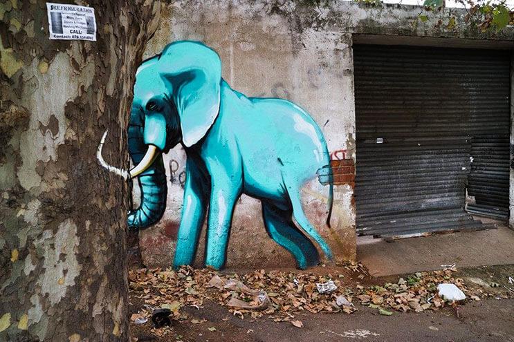 Una serie de graffitis de elefantes buscan dar esperanza a Sudáfrica 2