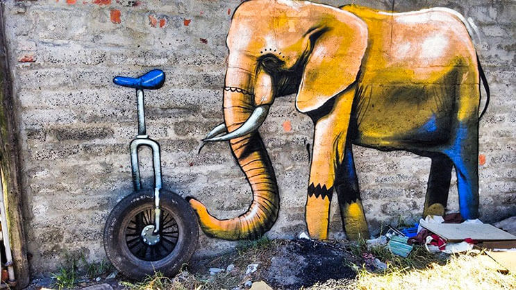 Una serie de graffitis de elefantes buscan dar esperanza a Sudáfrica 6