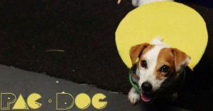 Conoce a Pac-Dog, el perro que Pac-Man hubiera querido tener en su familia