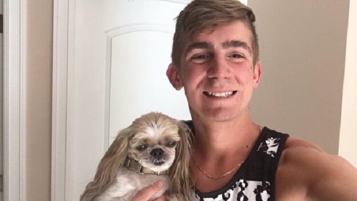 El corte de pelo de este perro ha puesto a reír a todo Internet 05