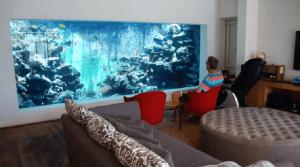 Este hombre construyó un acuario en su sala en el cual puede nadar