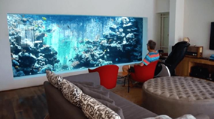 Este hombre construy un acuario en su sala en el cual - Peceras en casa ...