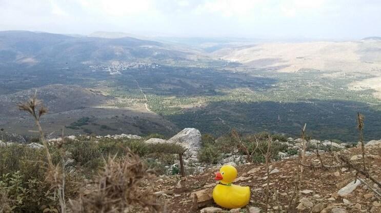 Este pato de hule que fue robado hace 5 años y ha regresado luego de un misterioso viaje 09