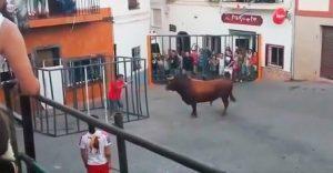 Este toro se cansó de los maltratos y decidió tomar cartas en el asunto