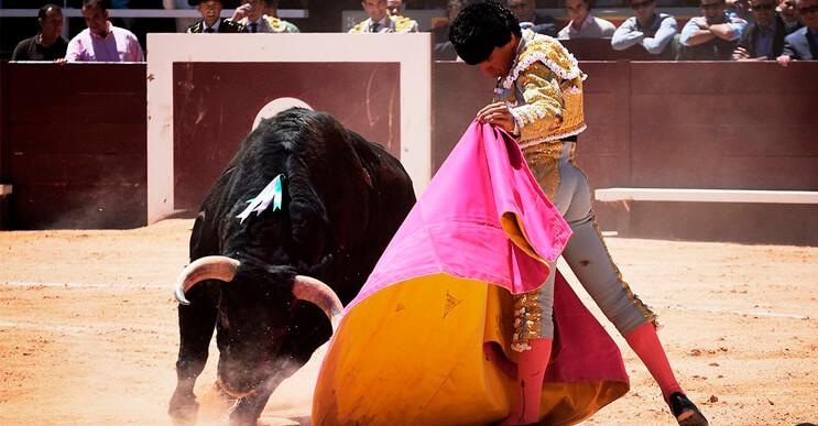 Francia elimina las corridas de toros de su patrimonio cultural