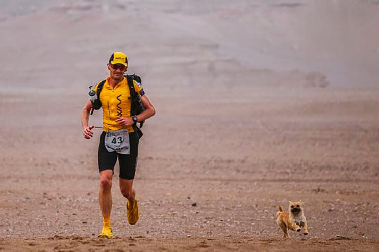 Perrita cruza la recta final de una maratón y gana algo más que una medalla 2