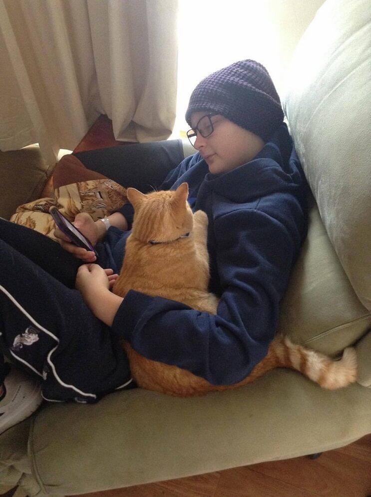 Un gato alegra la vida de su dueño que fue diagnosticado con cáncer 4