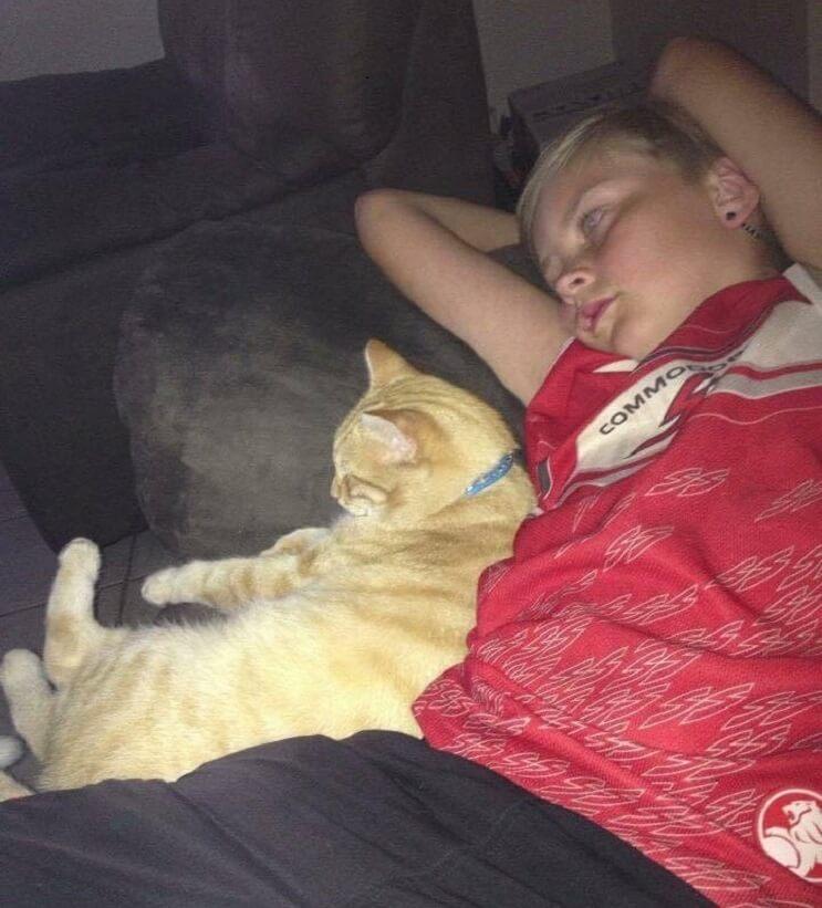 Un gato alegra la vida de su dueño que fue diagnosticado con cáncer 5 (1)