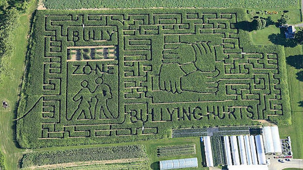 Una granja de Nueva York rinde homenaje a Mario Bros con un enorme laberinto 02