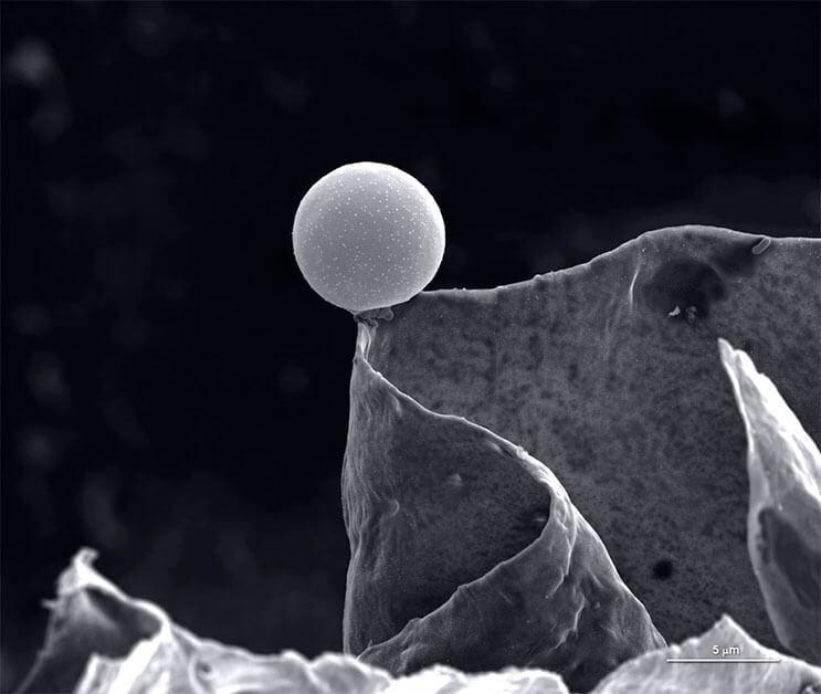 asombrosas-fotografias-ganadoras-del-concurso-de-la-royal-photographic-society-4