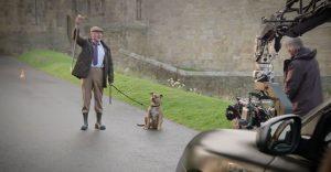 El perro más solitario del mundo cae en manos de Anthony Hopkins y se convierte en la nueva estrella de Transformers 5